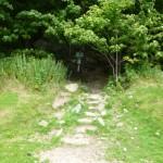 Deer Leap Trail - Easy